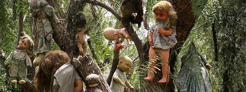 इस जंगल में है 'डेड डॉल्स' का राज, दिन में भी यहां जाने से डरते हैं लोग