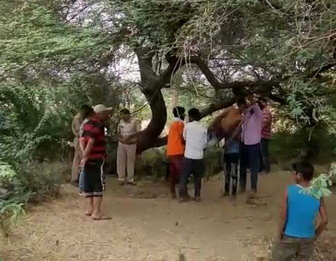 कलिंजरा गांव में पेड़ से लटका मिला अज्ञात व्यक्ति का शव, इलाके में फैली सनसनी