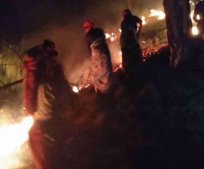 उत्तराखण्ड के धेवरा गांव के जंगलों में लगी आग बुझाने में महिलाओं ने संभाला मोर्चा