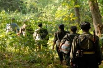 मध्य प्रदेश: कान्हा में ट्रेनिंग कैंप लगाने की तैयारी कर रहे नक्सली
