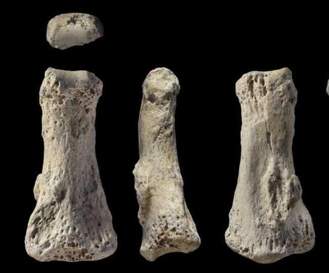सऊदी अरब में मिली 85 हजार साल पुरानी इंसानी उंगली