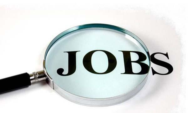 10वीं पास बेरोजगार युवाओं के लिए बड़ा अवसर, यहाँ निकाली बंपर वैकेंसी