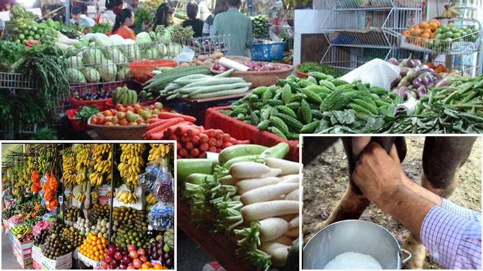 किसानों का आन्दोलन, कहा- शहर में 10 दिन नहीं आने देंगे फल, सब्जी और दूध