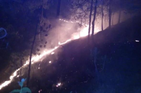उत्तराखंड के जंगलों में आग का कहर जारी, तीन बच्चों की जिंदा जलकर हुई मौत