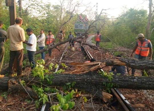 दंतेवाड़ा : नक्सलियों ने रेलमार्ग पर पेड़ काटे, फोर्स पर भी की फायरिंग