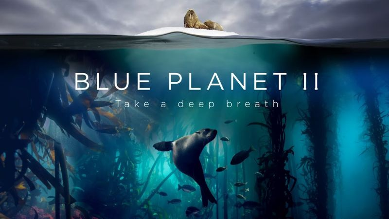 Blue Planet 2 release in India