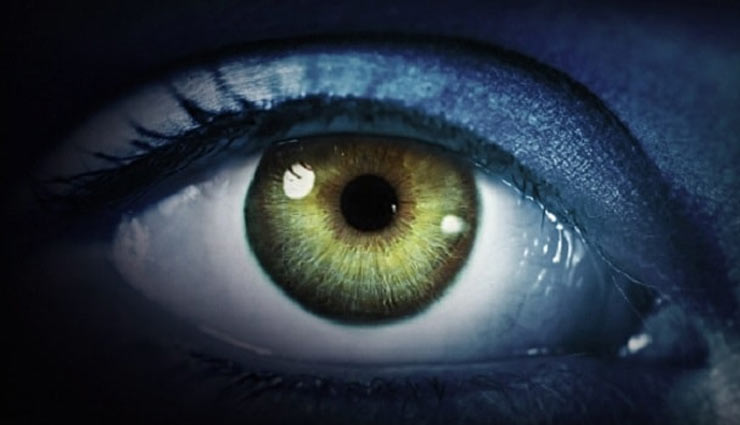 आपके घर को बुरी नज़र से बचाता है कपूर का ये उपाय