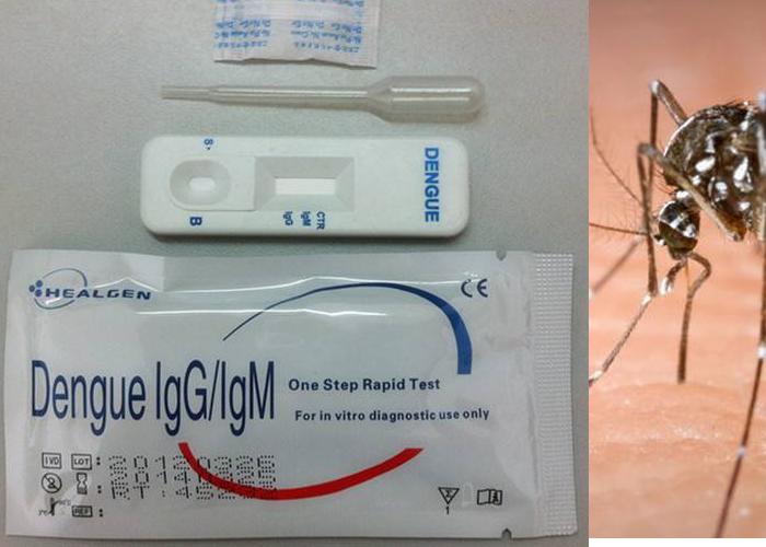 dengue kit