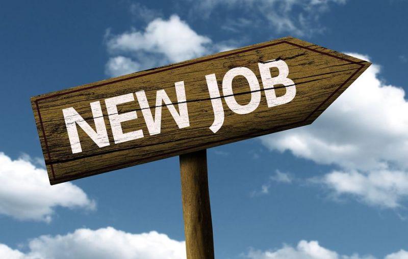 इस मंत्रालय में निकले नौकरी के बम्पर अवसर, ऐसे करें आवेदन