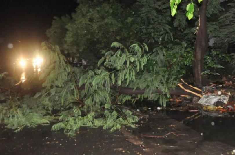 75 लोगो की हो गई मौत, तो इस वजह से आया था भयानक तूफान