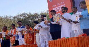 आम चुनाव से पहले बीजेपी-शिवसेना के लिए खुशखबरी, इन चुनावों में लहराया जीत का परचम