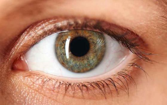 हरियाणा में 'नेत्र ज्योति बचाओ अभियान' ने छीन ली 38 मरीजों की आंखों की 'रोशनी'