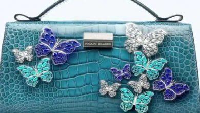 Photo of ये हैं दुनिया का सबसे महंगा बैग कीमत जानकर उड़ जाएंगे आपके होश