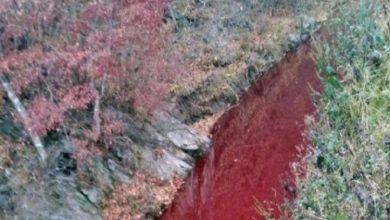 Photo of इस मंदिर में बहती हैं खून की नदी, वजह जानकर उड़ जाएंगे आपके होश
