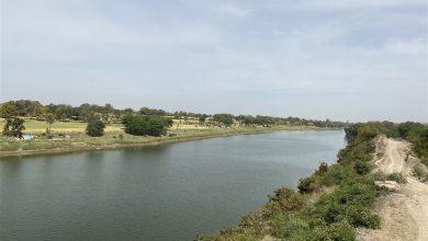 Photo of देश के इस हिस्से में नदी से निकल रहे हैं सोने के सिक्के, सैकड़ो लोगों ने…