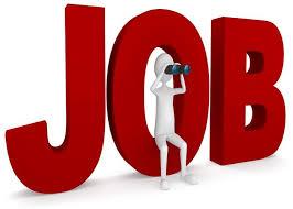 Photo of युवाओं के लिए सरकारी नौकरी पाने का सुनेहरा मौका, इन पदों पर निकली  बंपर भर्ती