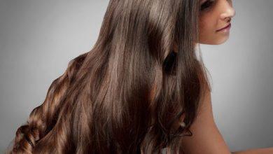 Photo of सफेद बालों से मिलेगा छुटकारा चायपत्ती से करें ये छोटा सा उपाय…