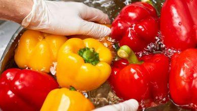 Photo of कोरोना काल में इस तरह से करें सब्जियों की धुलाई, नहीं रहेंगे कीटाणु