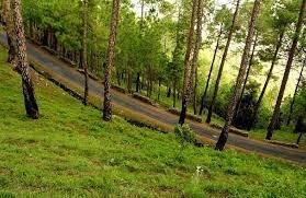 Photo of आपके बेहद नजदीक भारत की ये 10 खूबसूरत जगहें, कम बजट में ले सकते है मजा