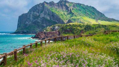Photo of पांच ऐसी आश्चर्यजनक जगह जो आपका मन मोह लेगी