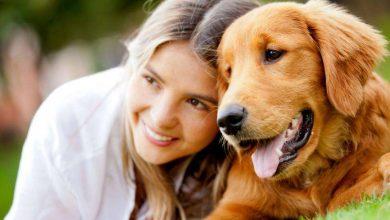 Photo of अगर आपके घर में भी है कुत्ता, तो जरूर पढ़ ले सेहत से जुड़ी ये खास खबर…
