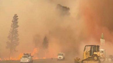 Photo of अमेरिकी राज्य ओरेगन में लगी जंगल की आग ने लिया विकराल रूप, 14 हजार से ज्यादा लोगों को…
