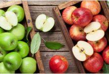Photo of सेब खाने के बाद नहीं खाना चाहिए ये 4 चीजे, सेहत को होता हैं बड़ा नुकसान…