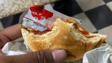 Photo of बर्गर में निकला बिच्छू, ग्राहक की बिगड़ी तबीयत, पढ़े पूरी खबर