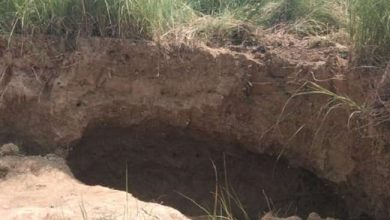 Photo of कानपुर के पलहनापुर गांव में मिट्टी की खोदाई करते समय टीला धंसने से दो किसान की हुई मौत